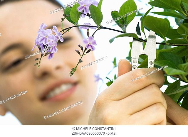 Young woman cutting off sprig of flowers