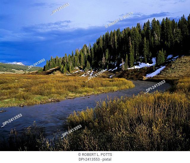 The Buffalo River flows through Bridger-Teton National Forest; Moran, Wyoming, United States of America