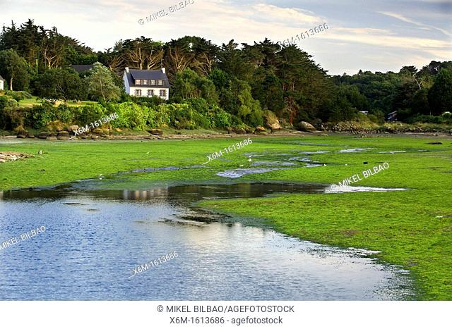 house and salt marsh Ploumanach  Perros-Guirec Breton: Perroz-Gireg is a commune in the Côtes-d'Armor department in Bretagne in northwestern France