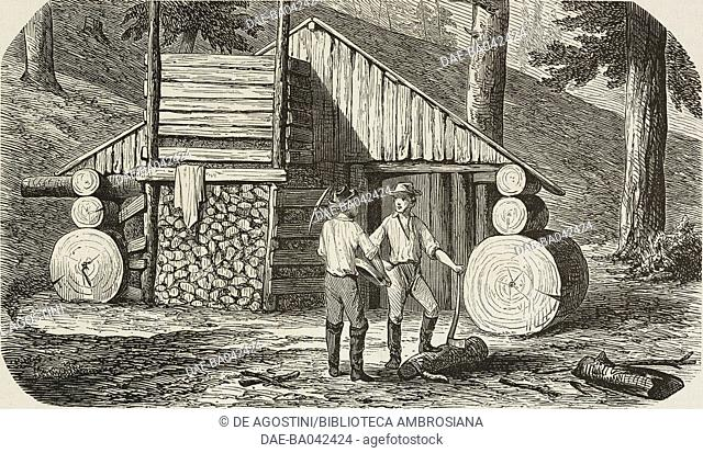 A gold prospector's hut, California, United States of America, illustration from L'Illustration, Journal Universel, No 545, Volume XXII, August 6, 1853