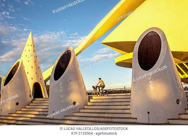 Palace of Arts 'Reina Sofia',City of Arts and Sciences.Valencia. Spain