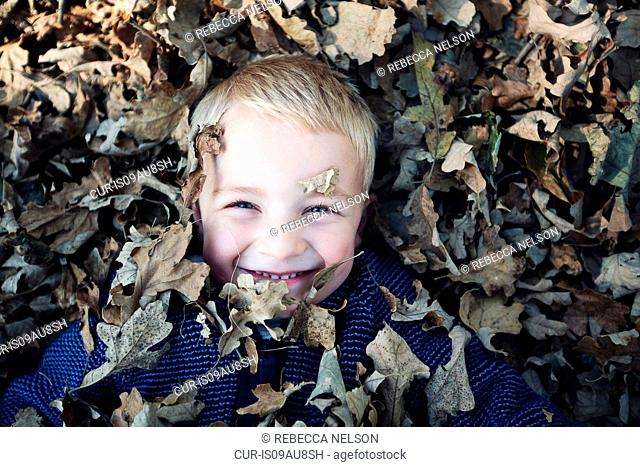 Overhead view of boy lying down lovered in autumn leaves looking at camera smiling