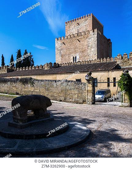 Castillo de Enrique II. Ciudad Rodrigo. Salamanca. Castilla León. España