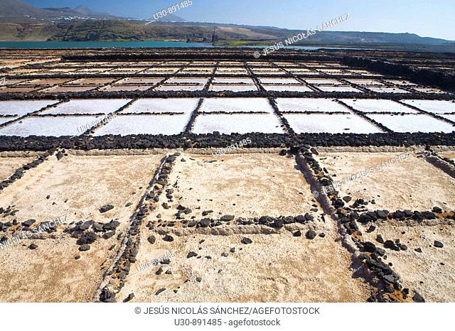 Overview of Salinas de Janubio or salt mine of Janubio  Yaiza  Lanzarote island, in Canary islands  Spain