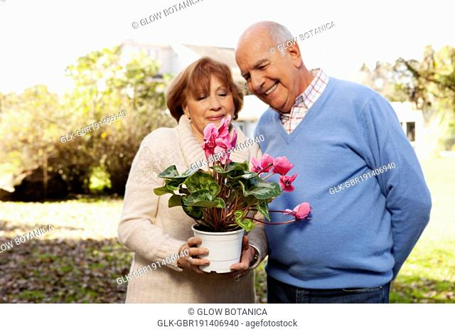 Couple holding a potted plant in a park