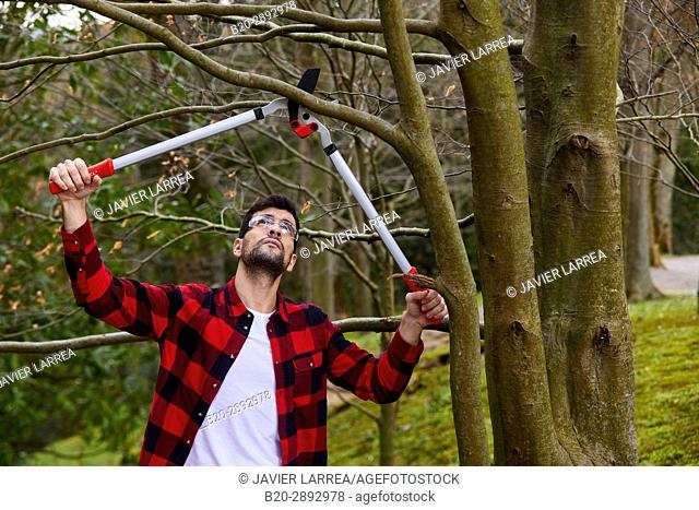 Gardener with prunning tool, Lopper, Aiete Park, Donostia, San Sebastian, Gipuzkoa, Basque Country, Spain