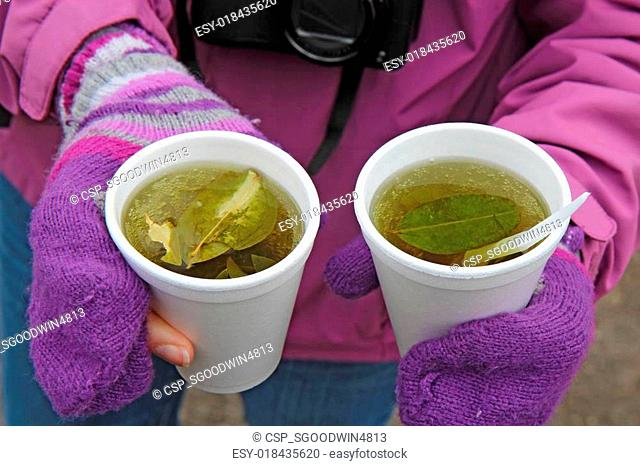 Mate de coca Stock Photos and Images | age fotostock