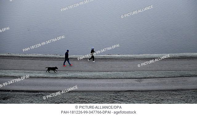 26 December 2018, Bavaria, München: Two joggers with dogs walk along the shore of the lake in the Olympic Park. Photo: Tobias Hase/dpa