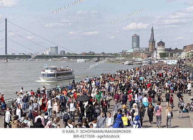 Crowd on the Rhine promenade on Japan Day, Düsseldorf, Rhineland, North Rhine-Westphalia, Germany