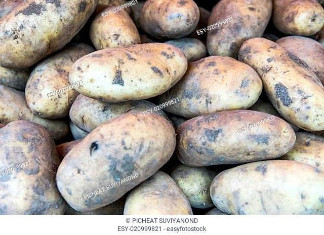 Ecological potatoes