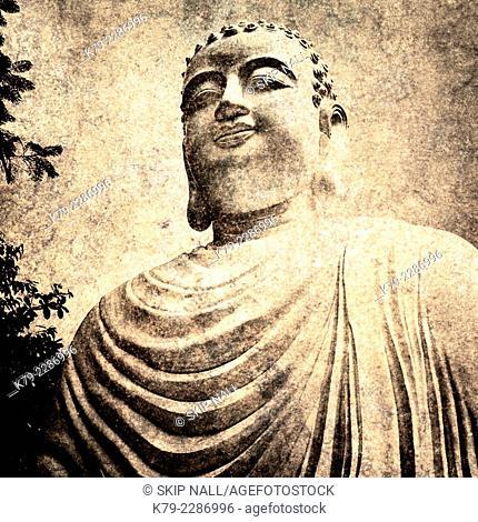 A statue of Buddha in Vietnam