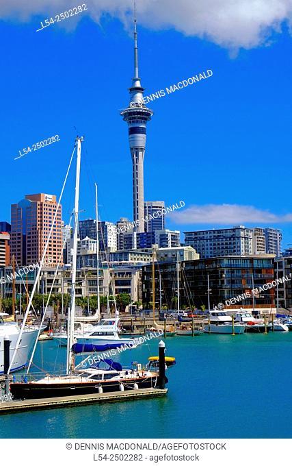 Auckland Waitemata Harbour New Zealand, NZ, North Island