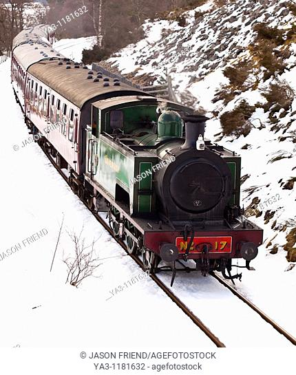 Scotland, Scottish Highlands, Cairngorms National Park  Strathspey steam railway engine and carriages, running along the track near Broomhill