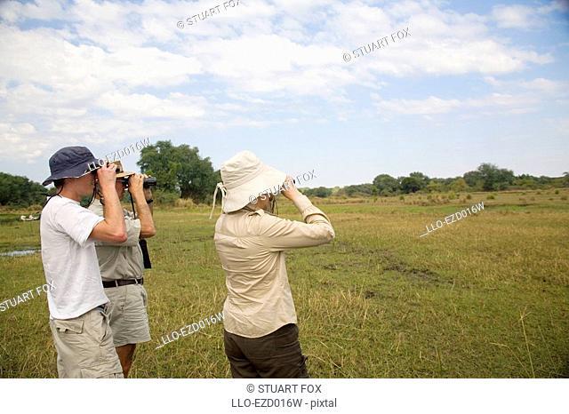 Tourists on a Safari Game Walk Looking Through Binoculars  Lower Zambezi National Park, Southern Province, Zambezi