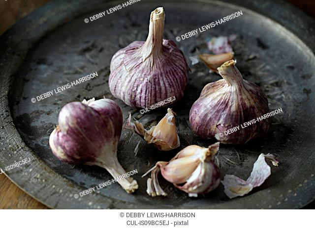 Garlic bulbs on tray
