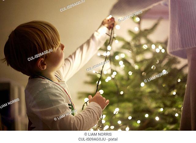 Young boy putting up christmas tree lights