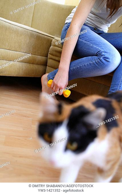 cat and legs of a young caucasian woman in jeans with dumbbells in hand