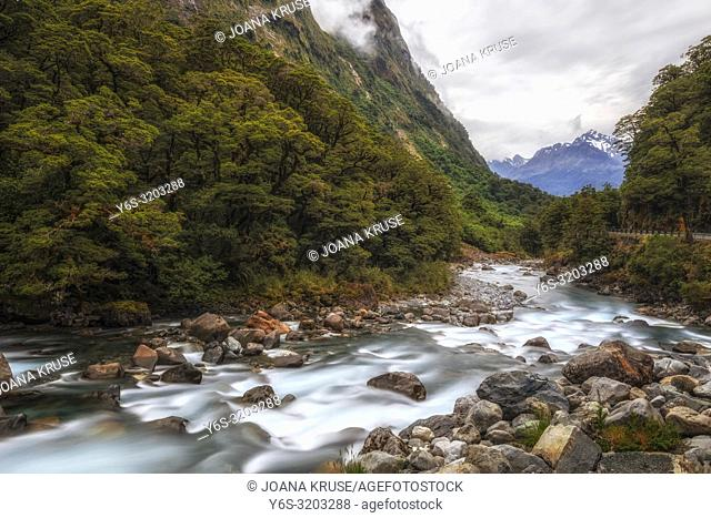 Falls Creek, Milford Sound, South Island, Fiordland, New Zealand