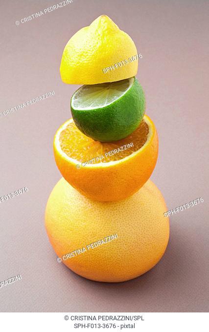 Citrus fruit, still life