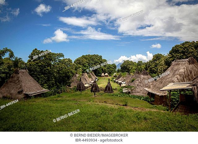 Traditional cottage village, Belaraghi, Flores, East Nusa Tenggara, Indonesia