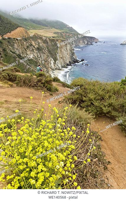 View from Cliffs of the Big Sur California's Coastal views
