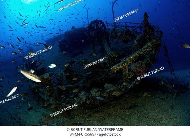 Teti Wreck, Vis, Adriatic Sea, Croatia