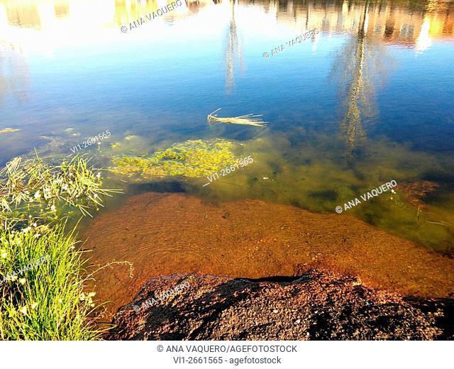 Laguna de Torrequemada, Cáceres province, Extremadura, Spain