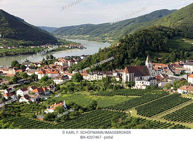 View over vineyards to Spitz an der Donau, Tausendeimerberg, Wachau, Waldviertel, Lower Austria, Austria