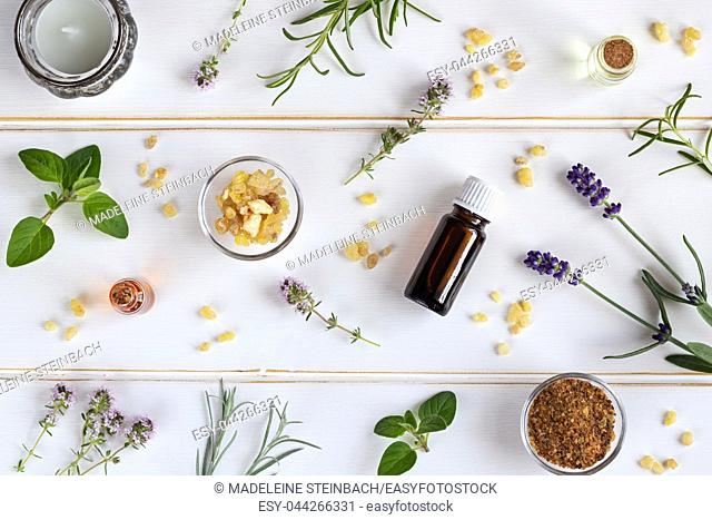 Bottles of essential oil with frankincense, lavender, thyme and other fresh herbs