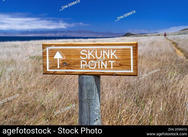 Hiker on the Skunk Point trail, Santa Rosa Island, Channel Islands National Park, California USA