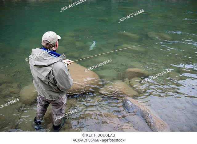 Flyfishing for steelhead, Skeena river region, British Columbia, Canada