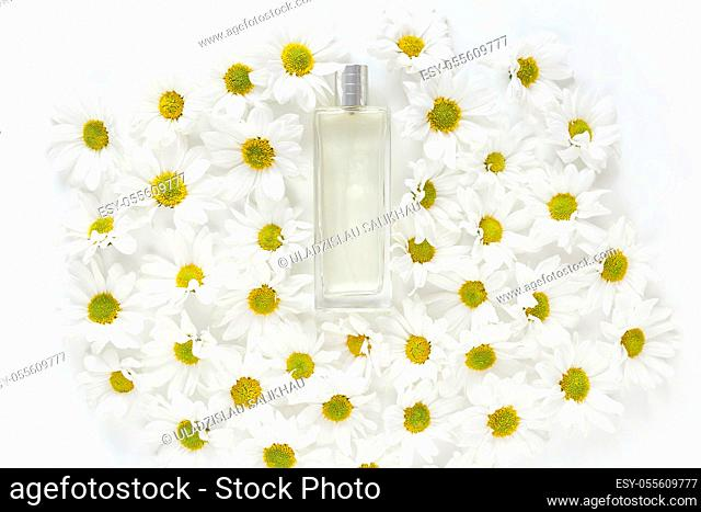 Fresh spring perfume. Glass jar with lot of daisy flowers buds on white background. Top view, flat lay