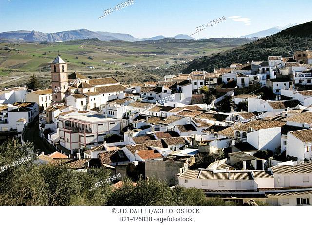 Casabermeja. Málaga province, Andalusia. Spain