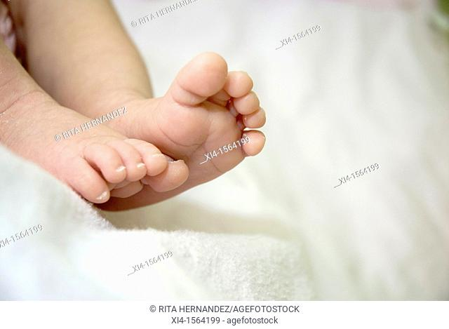 Close up of newborn feet, white background with copy space