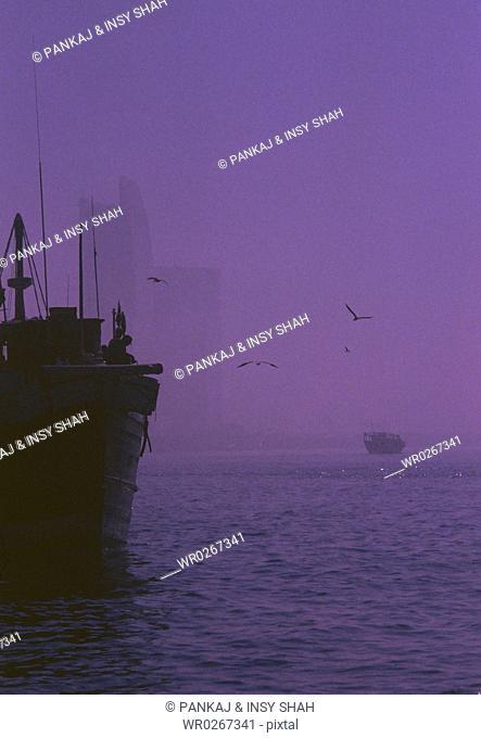 Birds are seen flying near the ship at dusk