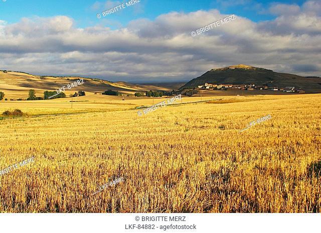 Stubble fields with village in background, Ibrillos, near Belorado, Castilla Leon, Spain