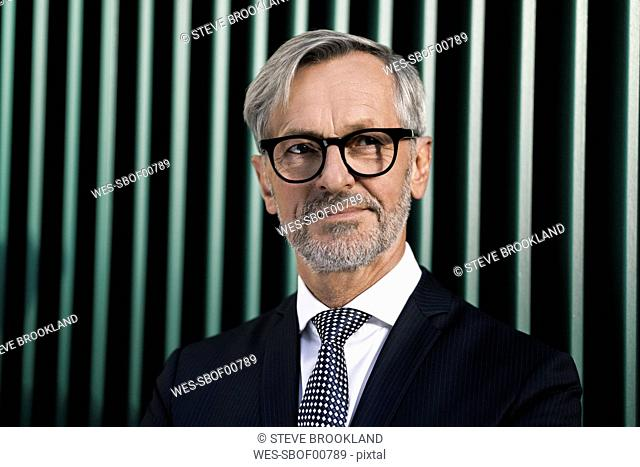 Portrait of grey-haired businessman in front of green wall