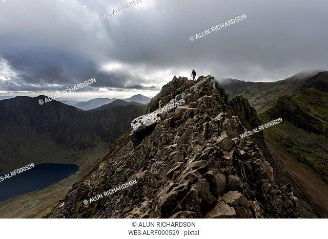UK, North Wales, Snowdonia, Cwm Glas, Garnedd Ugain, Clogwyn y Parson, hiker