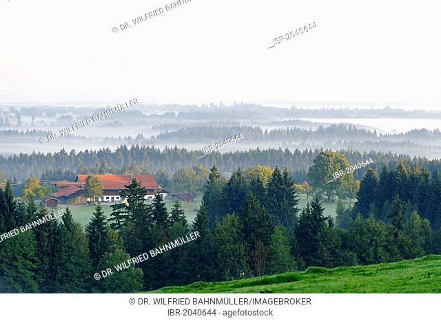 View from Woernern district to Bad Heilbrunn in autumn fog, Upper Bavaria, Bavaria, Germany, Europe