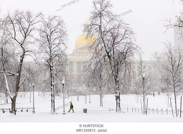 Massachusetts State House and Boston Common during blizzard in Boston, Suffolk County, Massachusetts, USA