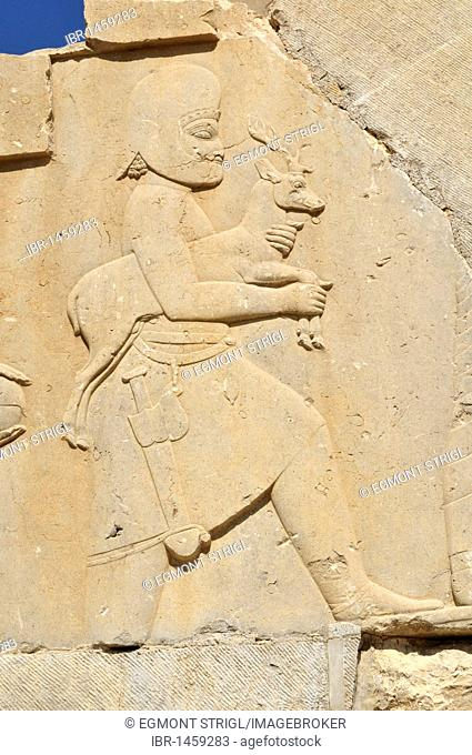 Bas-relief with soldier offering a deer at the Achaemenid archeological site of Persepolis, UNESCO World Heritage Site, Persia, Iran, Asia