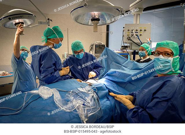 Reportage in the gynecology surgery service of the Chambéry Métropole Savoie Hospital, France. Breast conservation surgery (BCS) on breast cancer in a 72-year...
