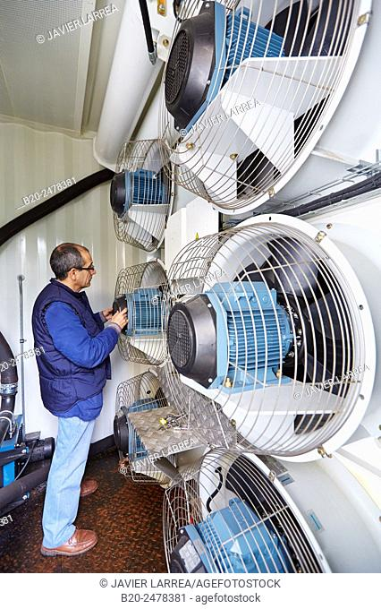 Technician by cooling fans of electric generator, uninterrupted electric service, Hospital Donostia, San Sebastian, Basque Country, Spain