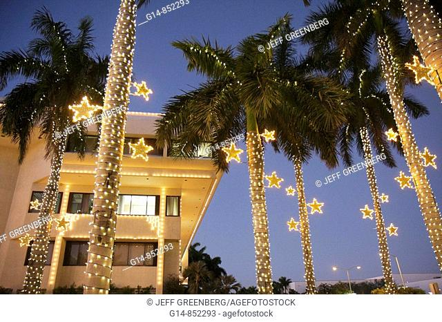Florida, Miami Beach, City Hall, palm trees, dusk, Christmas lights, winter holiday, season, seasonal, decoration, star, frond, tropical, tradition