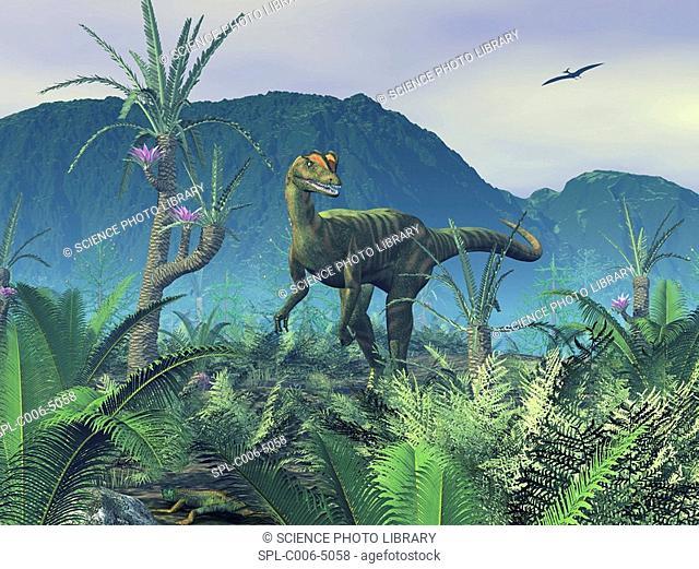 Dilophosaurus. Computer artwork of an adult male Dilophosaurus dinosaur on a hilltop covered in sago palms, Williamsonia gigas, and ferns