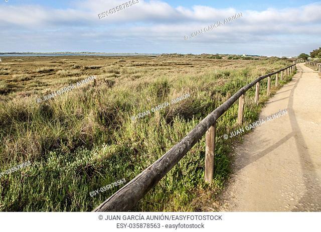 Piedras river marshlands footpath close to El Rompido, Huelva, Spain