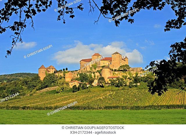 Berze-le-Chatel, Saone et Loire department, Burgundy region, France, Europe