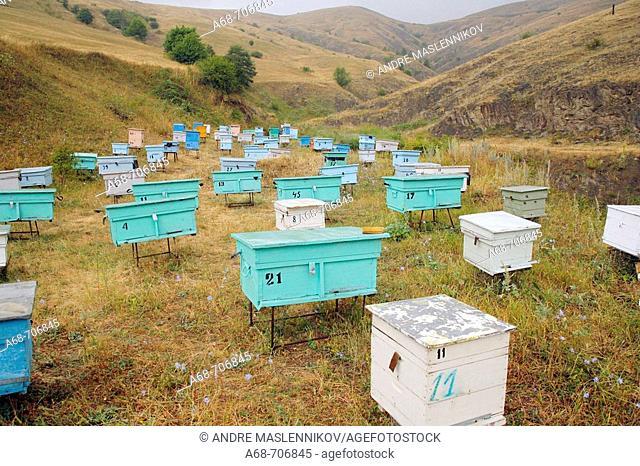 Bee hives in Nagorno Karabakh