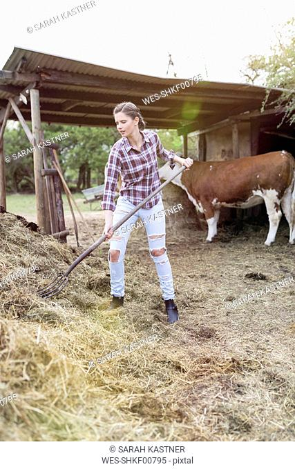 Woman working at dungheap on a farm