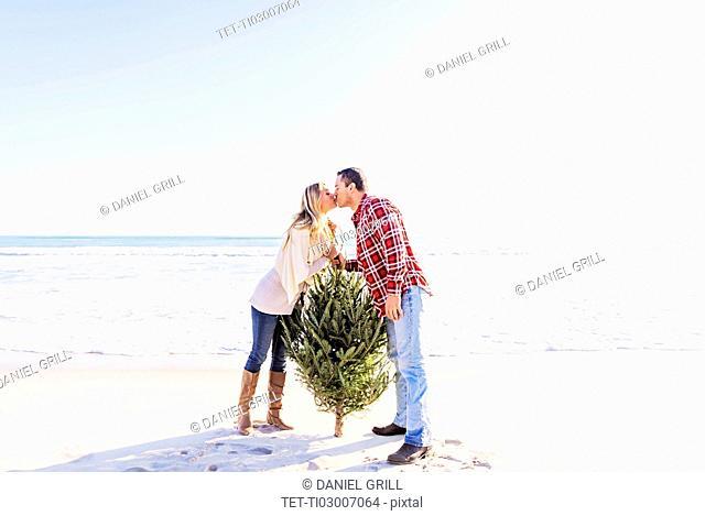 Loving couple kissing on beach beside tree